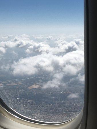 Swiss International Air Lines Reviews and Flights - TripAdvisor