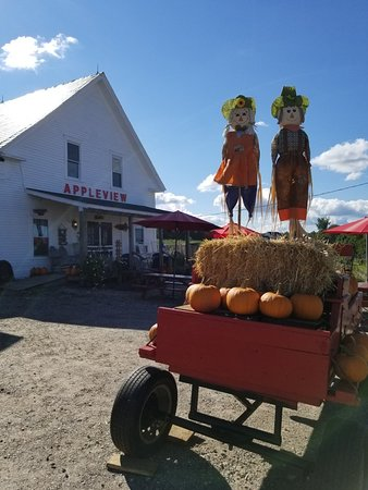 Pittsfield, Nueva Hampshire: Appleview Orchard