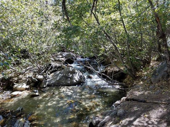Galena Creek Regional Park: Galena Creek from the Bitterbrush Trail