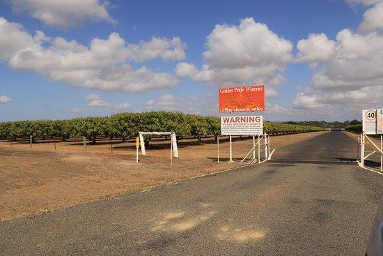 Biboohra, Australia: The Winery Entrance