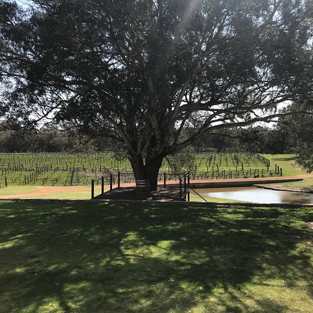 upper reach winery baskerville australia updated. Black Bedroom Furniture Sets. Home Design Ideas