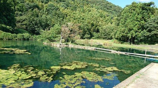 Shiramizu Lake: 小島に渡れます。