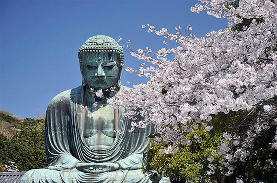 Kamakura Day Tour med Kamakura Buddha...