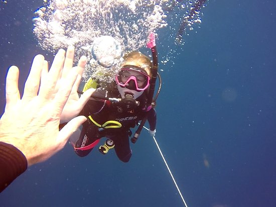 Wolf Rock Dive Centre: A celebratory high five at the end of the second dive!