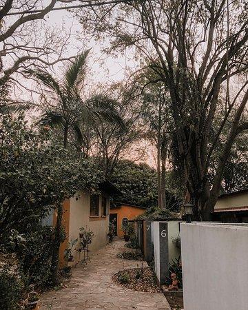 Schoemanskloof, แอฟริกาใต้: Path to rooms.