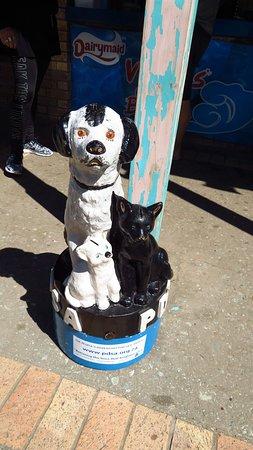 Victoria Bay, Südafrika: Cute statue & collection for animals