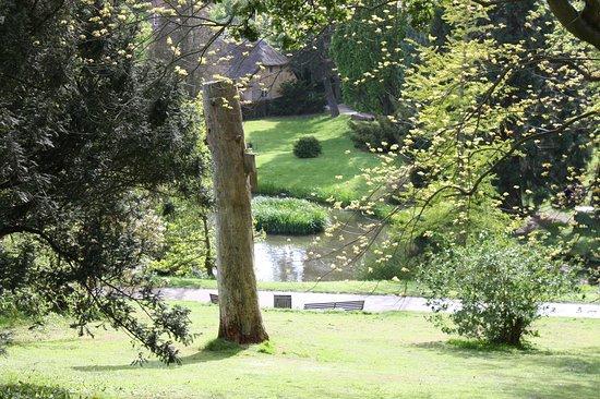 Aarhus Botanisk Have Botanical Garden Picture Of Botanical
