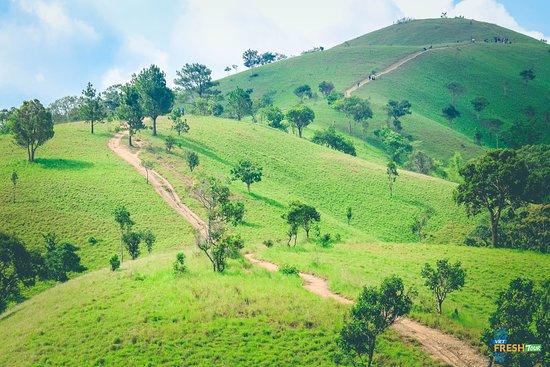 Tuy Phong, Вьетнам: Đây là đồi Lính - Thuộc cung đường trekking Tà Năng Phan Dũng