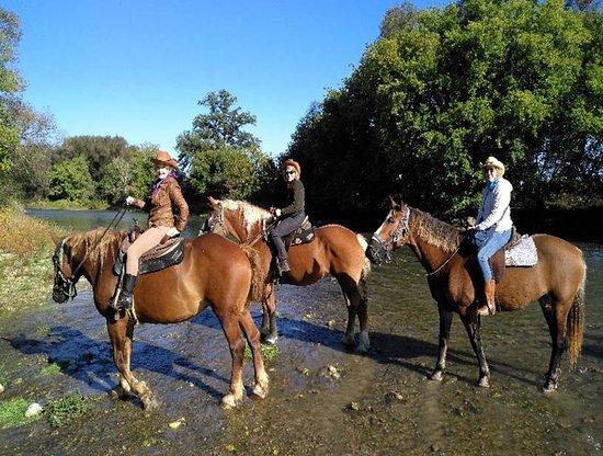 Conestogo River Horseback Adventures