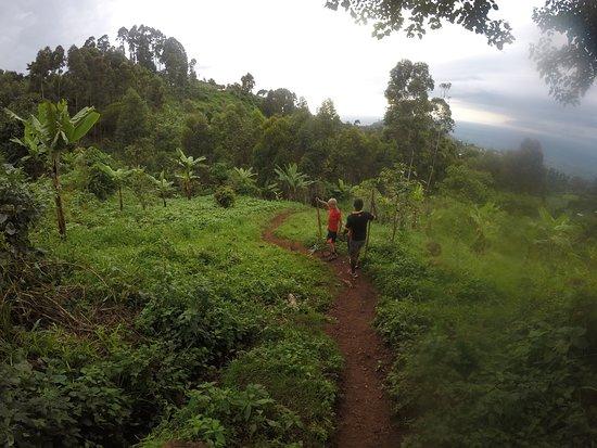 Salimo Safaris Uganda