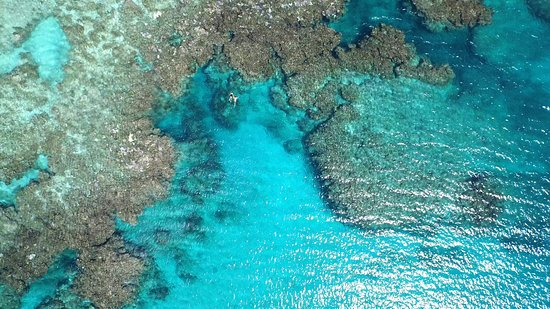Оствро Ясава, Фиджи: Reef snorkelling