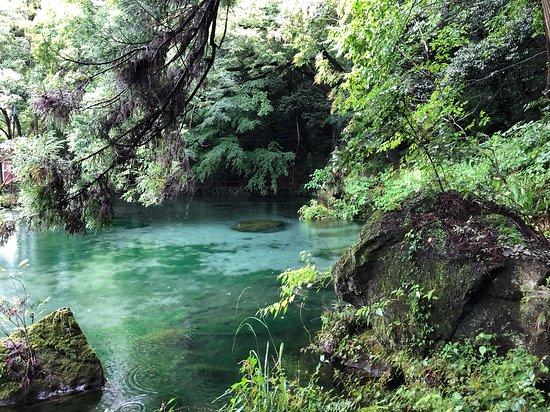 Izuruhara Benten Pond