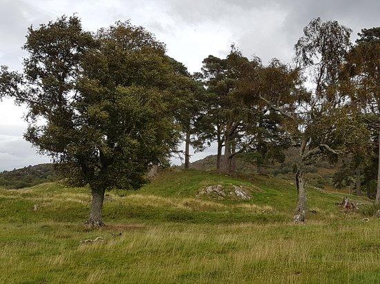 Kinloch Rannoch, UK: Outlander location huntin...😁