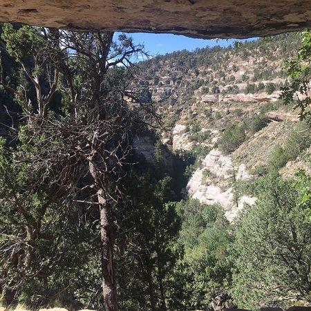 Walnut Canyon National Monument: photo7.jpg