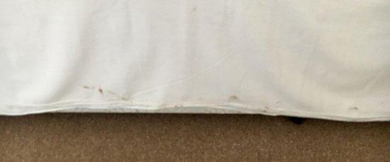 Avoch, UK: Dirty sheet