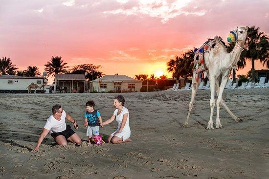 Mesaieed, Qatar: Beach