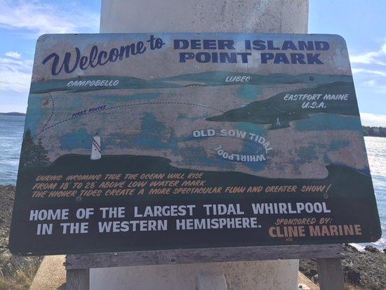 Deer point lighhouse and 'Old Sow Whirpool' Deer island NB