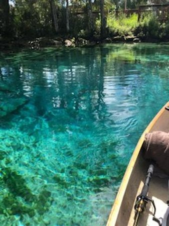 Three Sisters Springs: One of the three sister springs set together on the crystal river