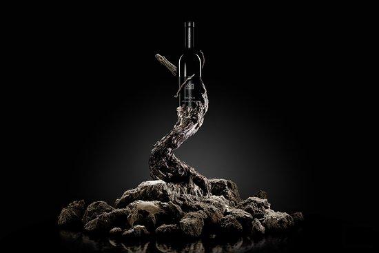Castelletto Merli, Italien: Vignaiolo di prima generazione produco vini che amo definire personali