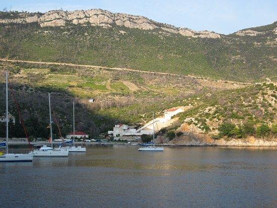 Trstenik, Croatie: View from balcony.