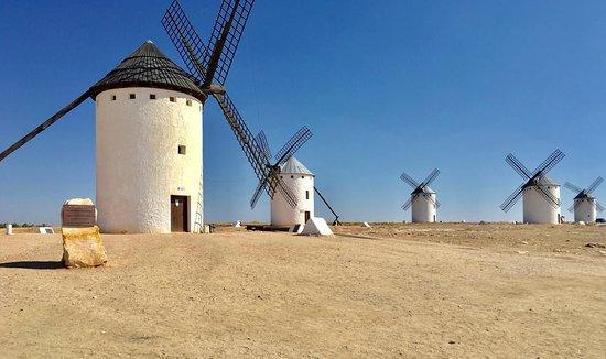 Mota del Cuervo, Spain: Photo of the Molina's in Campo de Criptana
