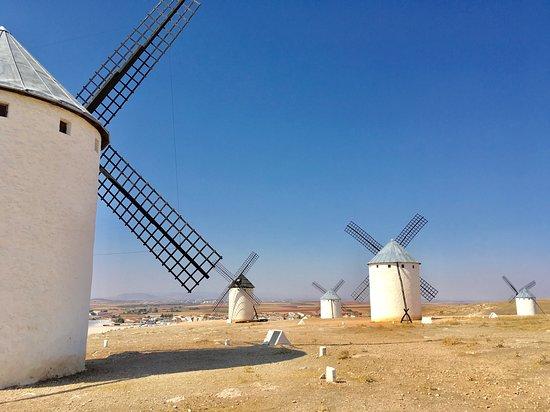 Mota del Cuervo, Spain: The Molinos (windmills) on the hill above Campo de Criptana