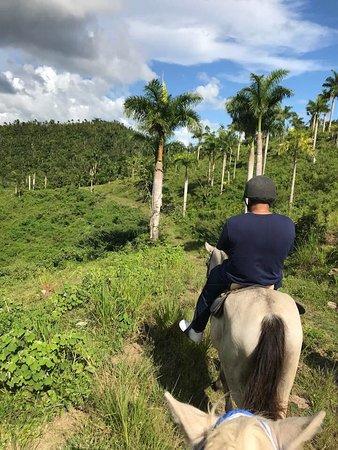 Riding through the palm trees.