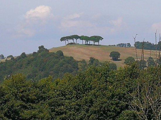 Latium, Italie : IMG_20180922_133447_large.jpg