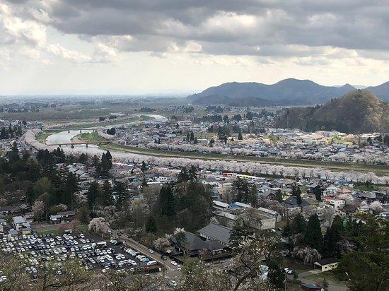 Furushiroyama Castle Ruins (Furushiroyama Park): 桜並木を一望