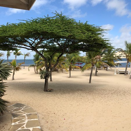 Manda Island, Kenya: photo1.jpg