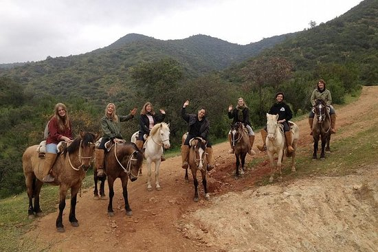 Horseback Riding and Ranch Day Trip...
