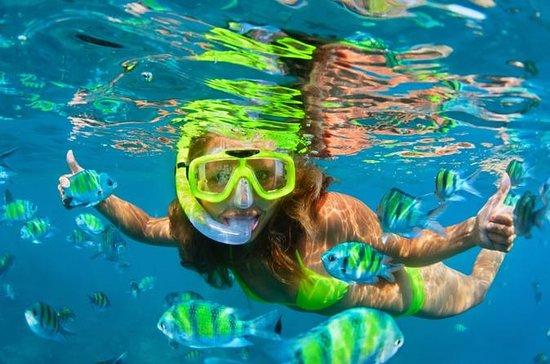 Pearl Islands Snorkling Adventures...