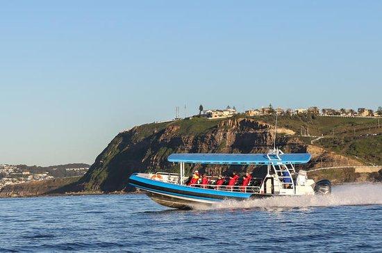 Coastal Adventure Tour From Newcastle