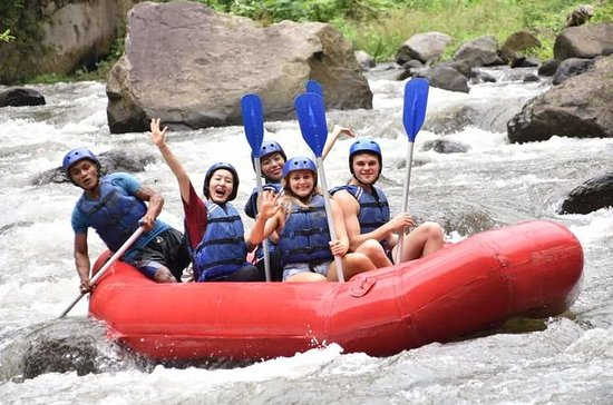 Rafting en eaux vives Ubud Activités