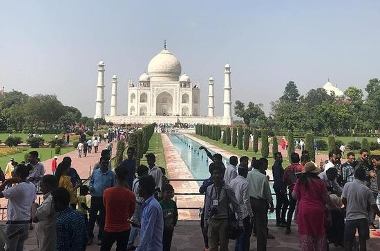Private Taj Mahal & Agra Tour from...
