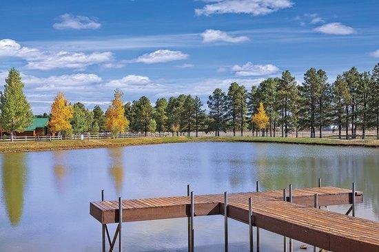 Overgaard, Аризона: Other