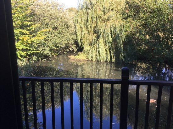 Badwell Ash, UK: View from our balcony