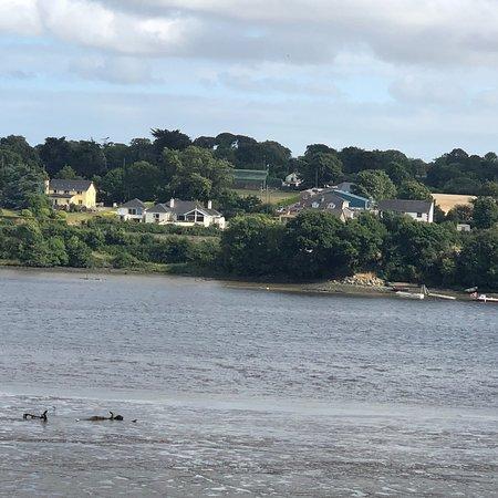 Ferrycarrig, Ireland: photo0.jpg