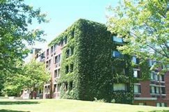 Amherst, MA: Dakin House (Lived there my first year). Hampshire FINALLY has Ivy-covered buildings!