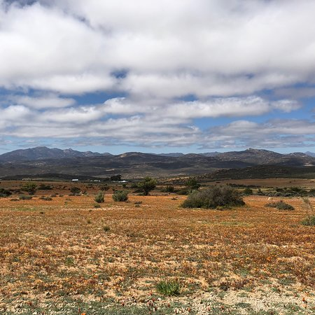 Northern Cape, South Africa: photo3.jpg