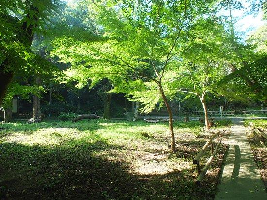 Tsumekiri Fudoson