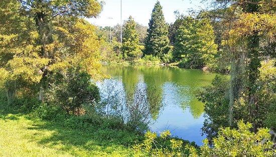 Glen Oaks Park