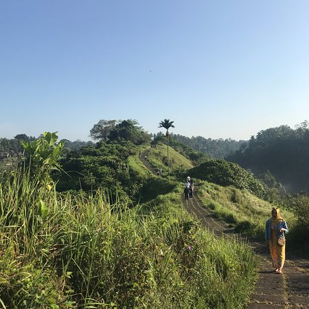 Campuhan Ridge Walk : photo1.jpg