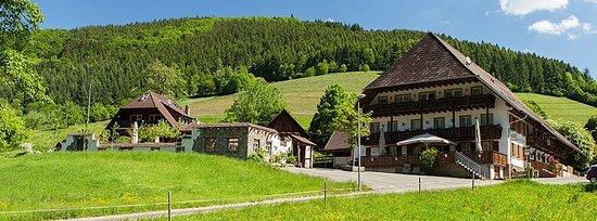 Simonswald, Germany: Umgebung
