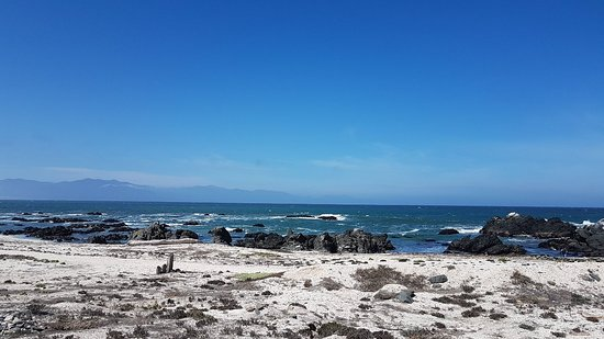 Punta Choros, Χιλή: Hermoso lugar, volveremos