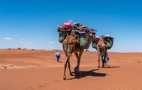 M'Hamid, Fas: Trip 4 days
