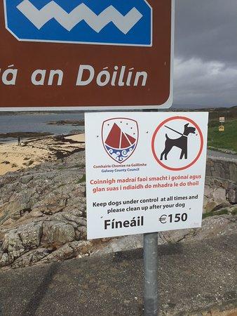 Carraroe, Ireland: Dogs on leash or fines