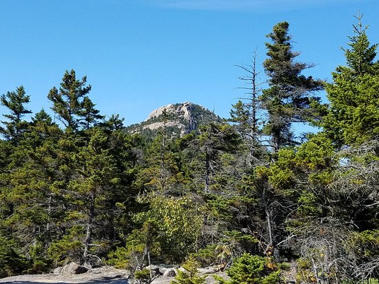 Mount Chocorua: IMG_1537914707531_large.jpg