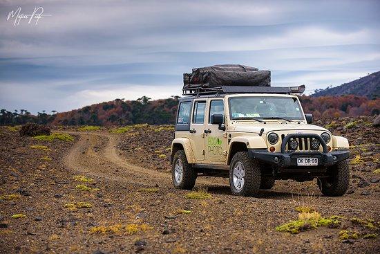 Araucania Region, Chili: Recorriendo la Reserva Nacional Las Nalcas junto a Ecophoto