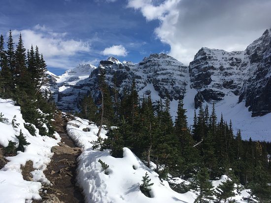 Eiffel Lake Trail